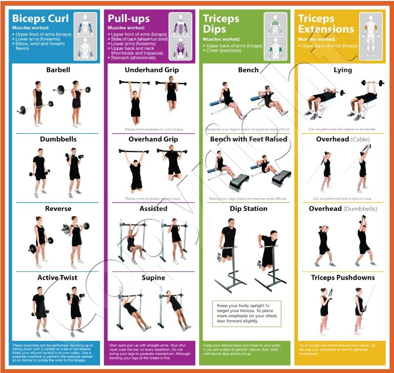 The ultimate mtb workout program pdf