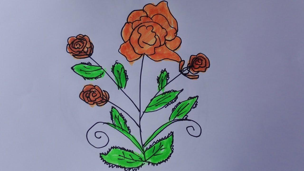 Eose bush how to draw