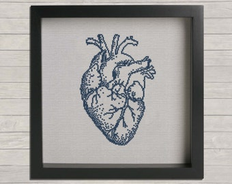 Free pdf anatomy cross stitch patterns