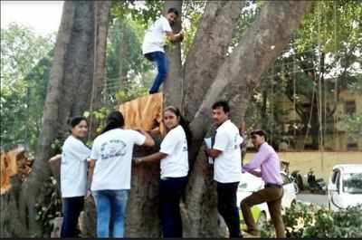 Chipko movement pdf in bengali