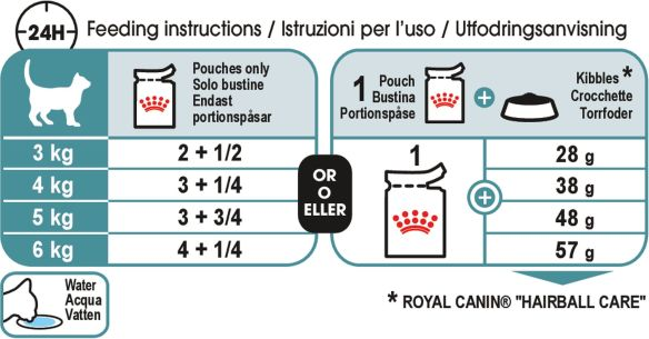 Royal canin dental cat feeding guide